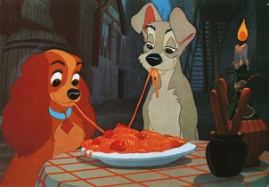 dogs spaghetti